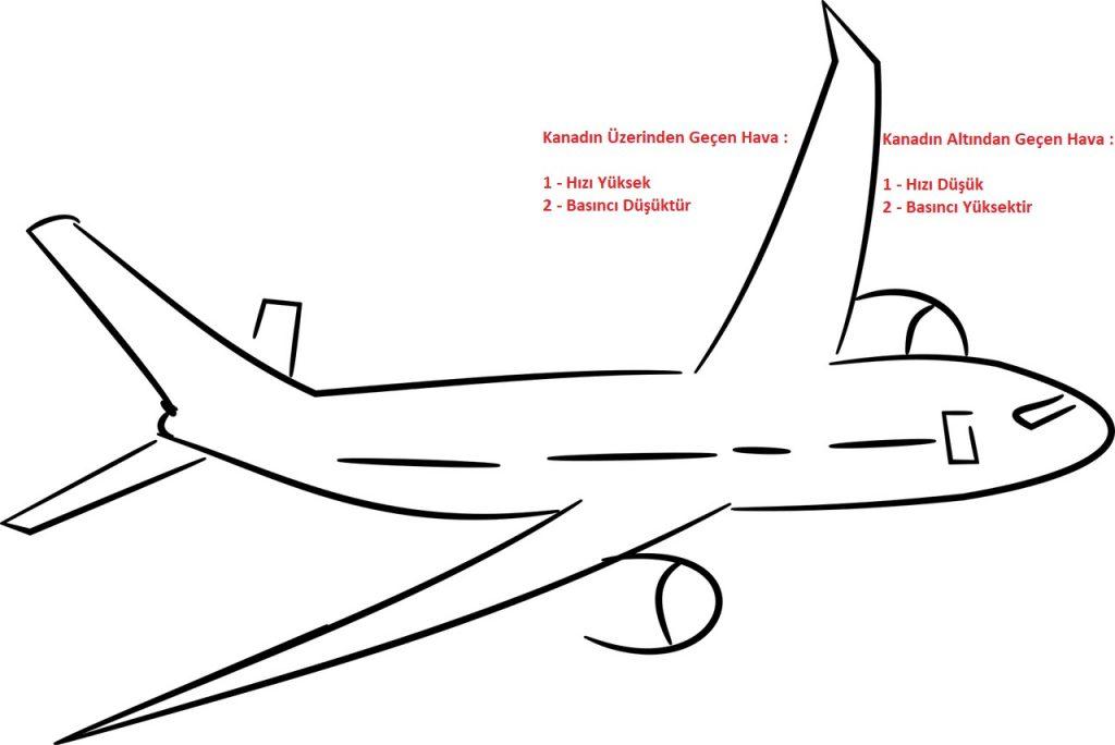 Uçak Kanat Yapısı Hakkında