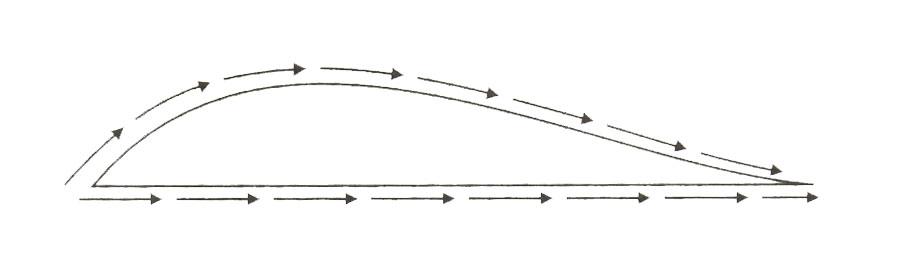 Airfoil Yapı